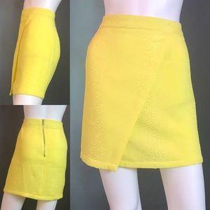 Just Fab Skirt